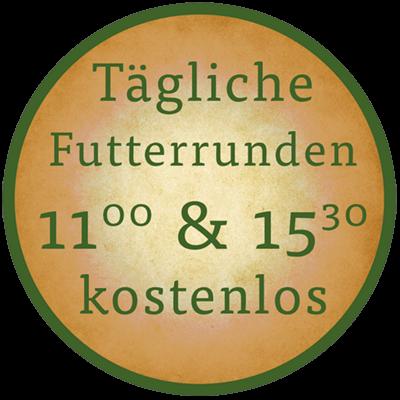 Button Tägliche Futterrunden mit Uhrzeiten der Fütterungen 11:00 & 15:00 Uhr