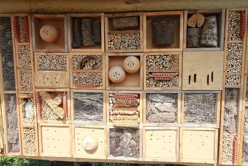 Detailfoto Insektenhotel im Zoo Arche Noah