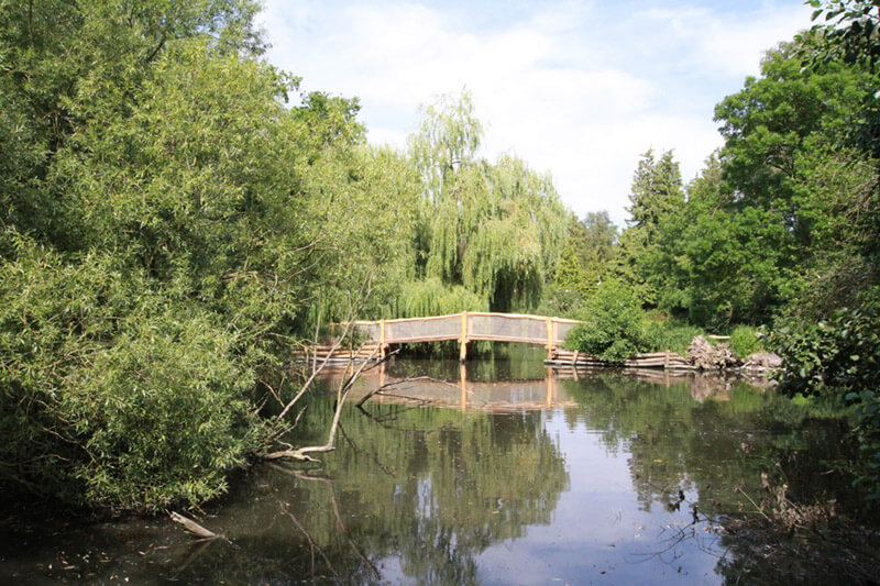 Teichanlage mit Holzbrücke im Zoo Arche Noah
